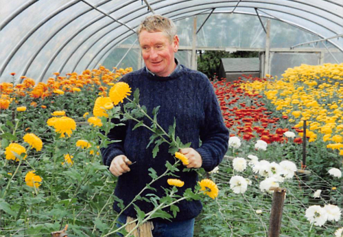 You'll never find Willie far behind. He too is an avid grower and has spent over 40 years at the Wallington Nursery site.
