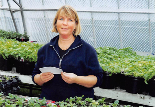 You will find Steph tending the plants in Wallington Nursery today.