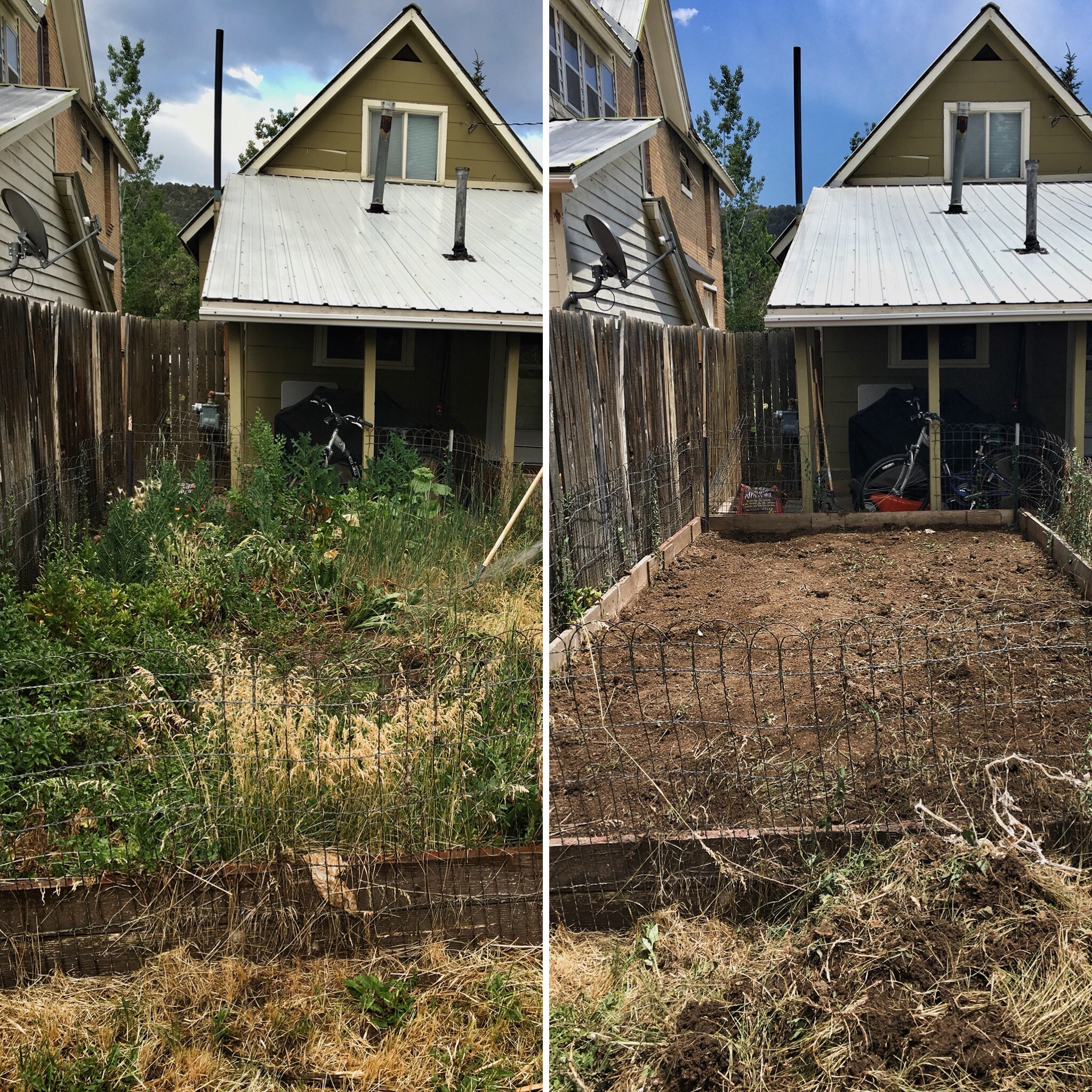 Before and after.: removing weeds from the garden plot.A labor of love people, this took a loooooooong time.