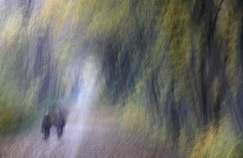 Im Englischen Garten, 2011, Photographie, Maße variabel,C-print auf Fuji Archive Papier