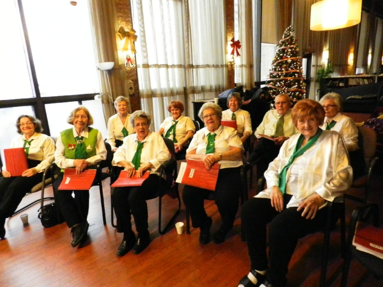 Seniors' Choir performing at Wexford Community Centre - December 2015