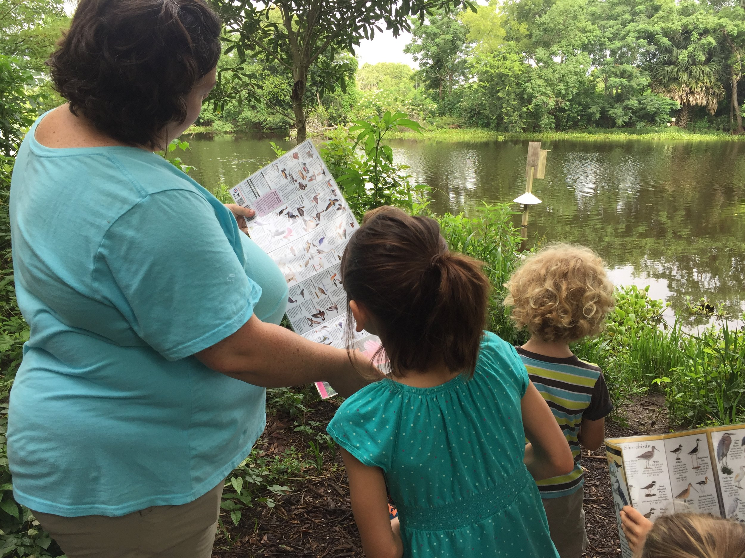 Using naturalist guides to identify the bird preening on the other side of the water.