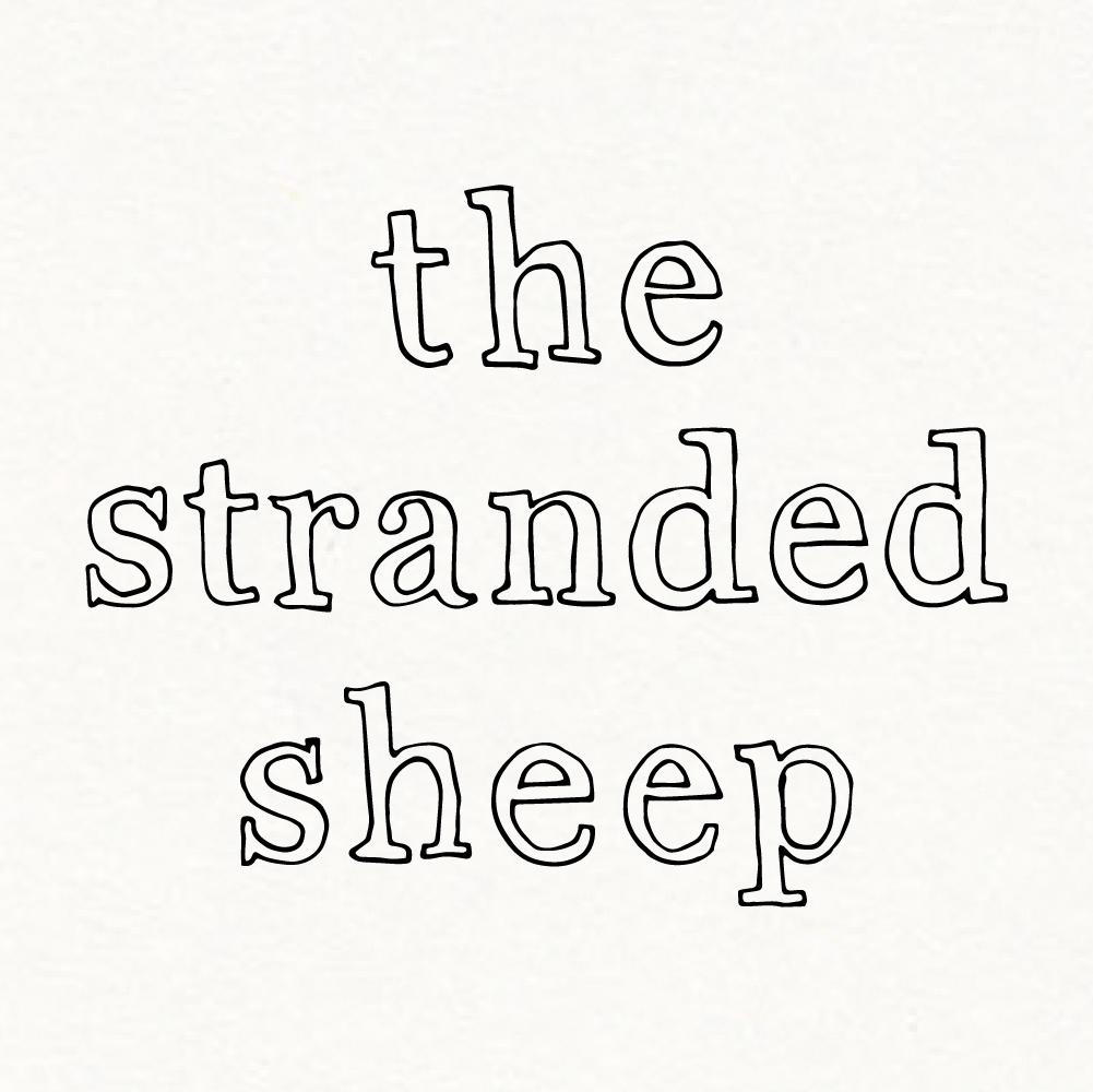 Stranded-Sheep.jpg