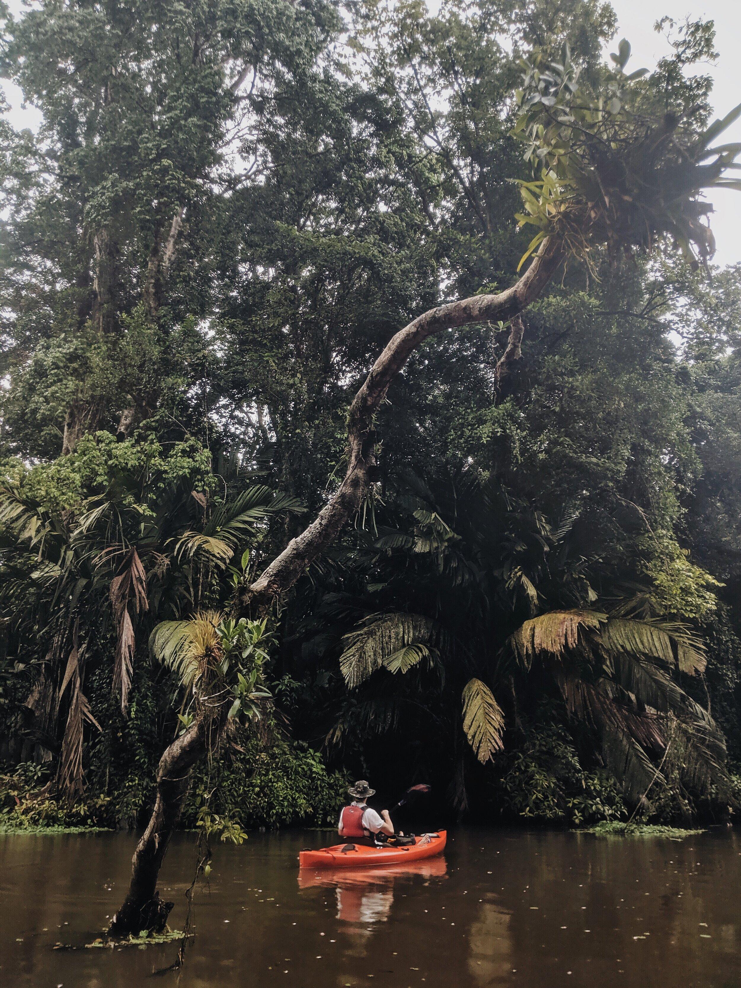 Costa Rica 08.jpg