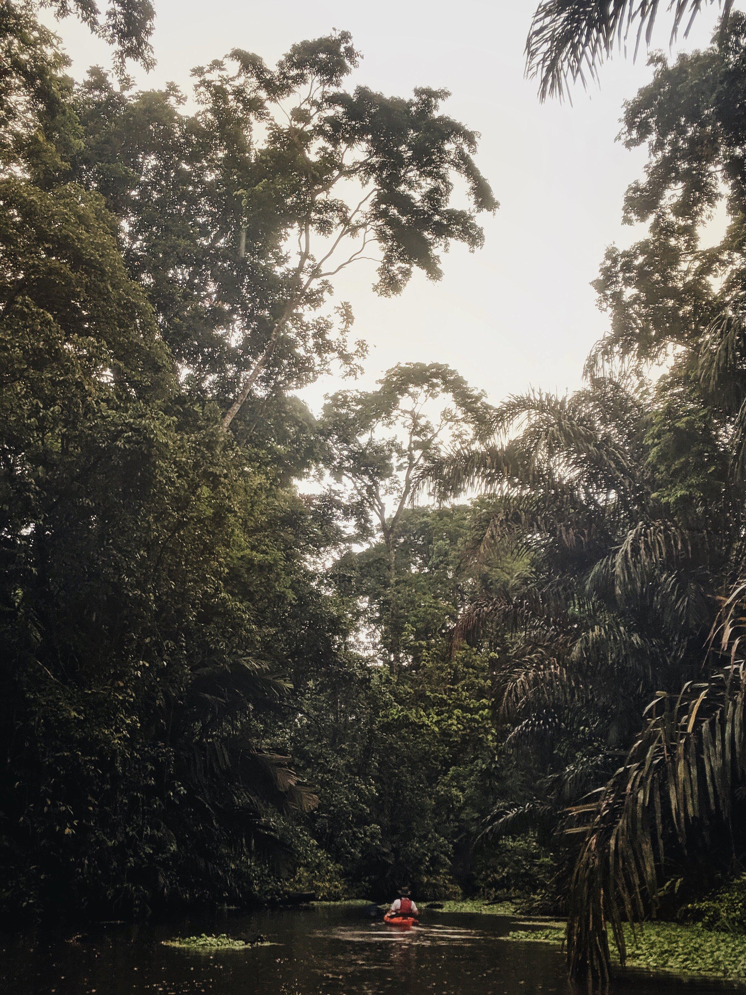 Costa Rica 21.jpg