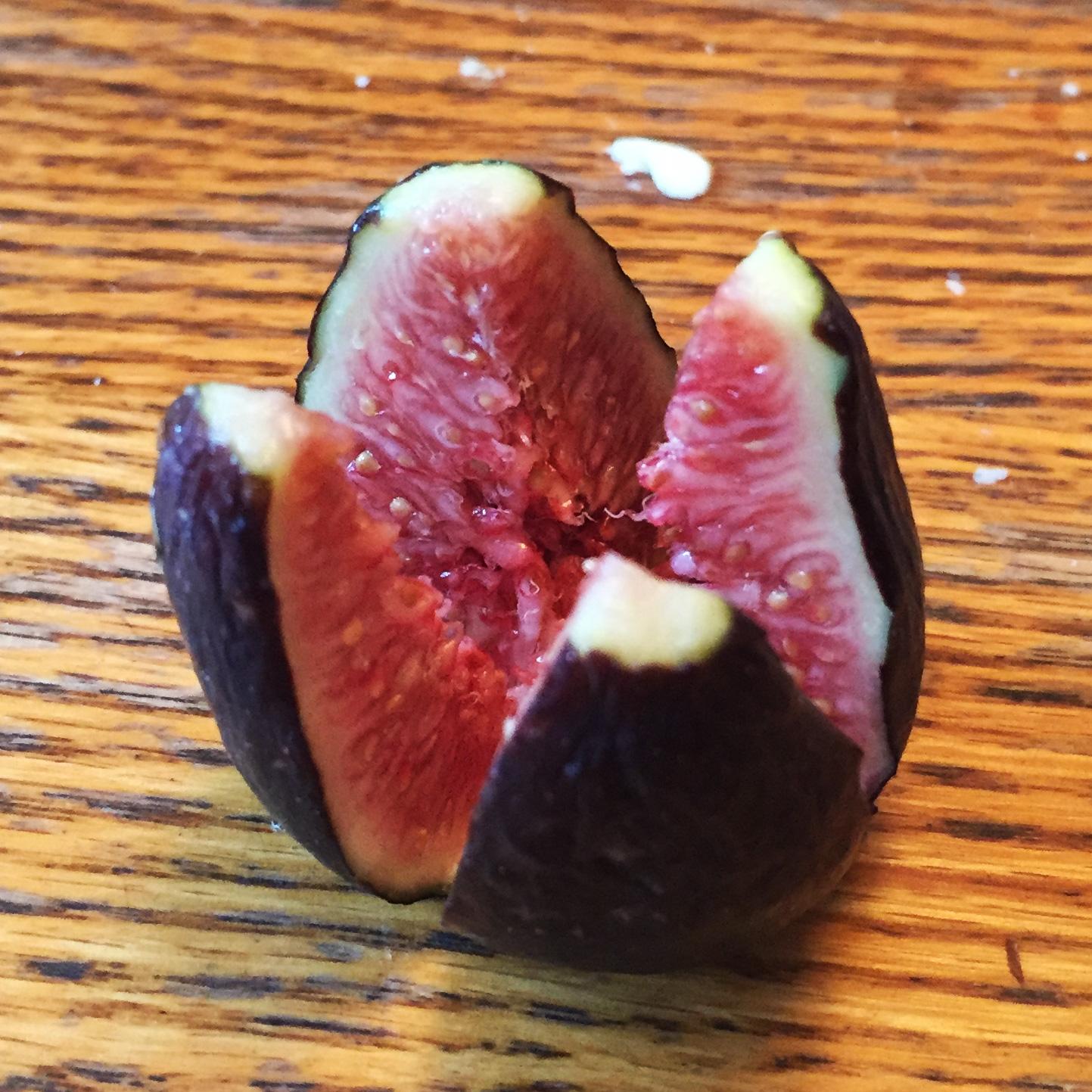 Stuffed-figs-recipe-boursin-goat-cheese-walnuts-appetizers-holiday-season-party-recipes-fig-cut.jpg