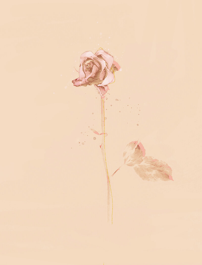 Beauté ROSE - Floral Art Print