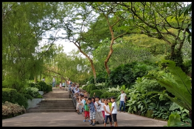 The children were amazed by the showcase of orchids and lush greenery.