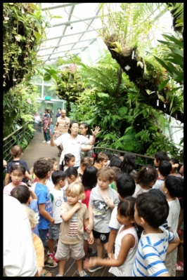 Learning about epiphytic orchids in the Cool House.