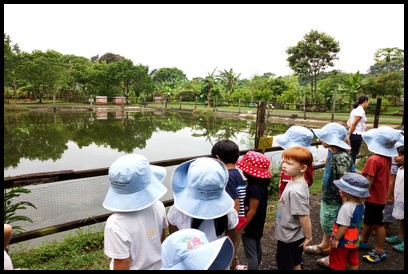 We visited Bollywood Veggies today. It was explained to everyone that the water from the pond is used to water the plants on the farm. They also got the chance to listen to the sounds of nature at Bollywood Veggies.