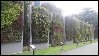 The children arrived at Hort Park and were greeted by the magnificent showcase of vertical greenery.