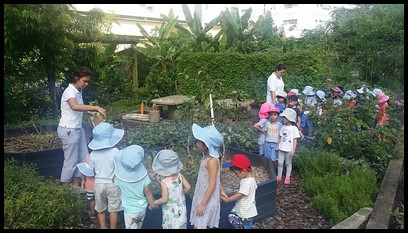Ms. Kristine showed them the eggplant and explained how it is also known as brinjal or aubergine. The children also learnt that it can be grown by planting the seeds and it thrives in full sun.