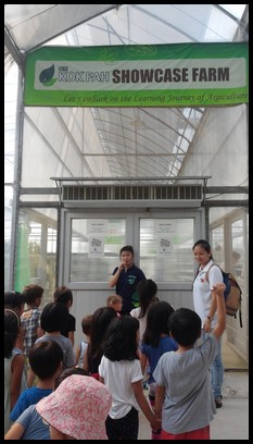 The children were excited to enter the greenhouse to see the different types of plants grown.