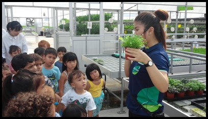 Ms. Fiona showed the children the a pot of broccoli microgreens at 14 days old. They can be harvested between 8-12 days after planting.