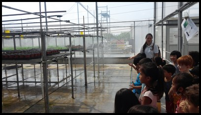 The children were shown how the snow pea sprouts were watered using overhead irrigation.