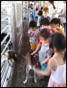 The children petting the friendly kid.