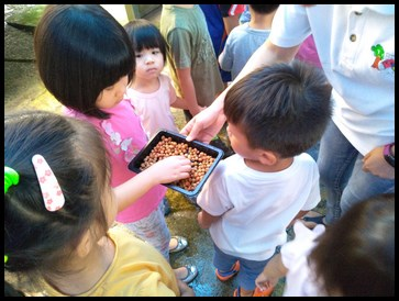 The children felt the seeds that were soaked in water for 8 hours