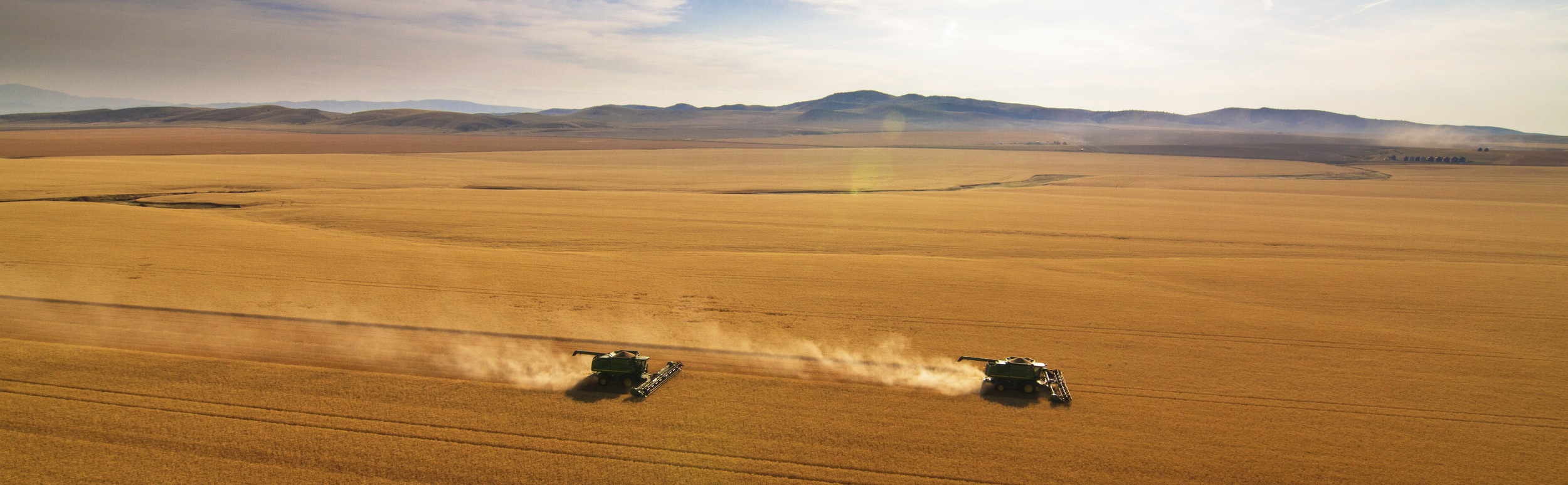 Harvesting Wheat fileds PANO clipped.jpg