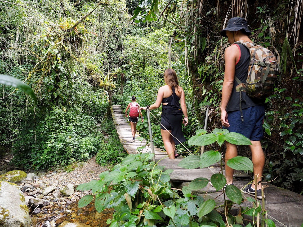 You walk through some amazing jungle and across deteriorating suspension bridges over gently flowing rivers.