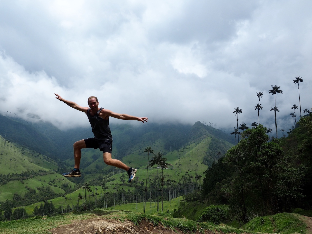 Jumping around in the palms. Palms litter the valley literally as far as the eye can see. The longer route brings you down above the valley, letting you enjoy all the area has to offer!