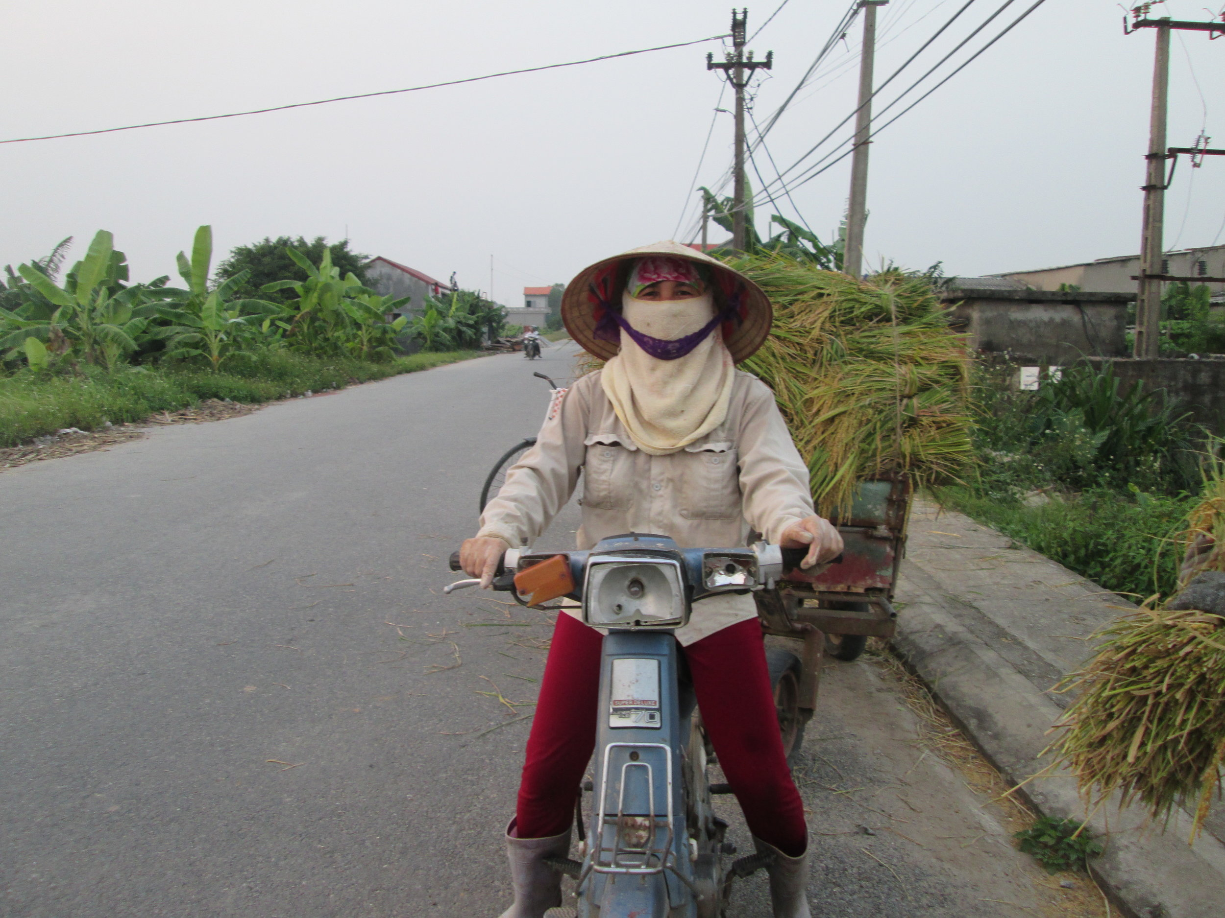 Hien Tran transporting rice straw for Fargreen