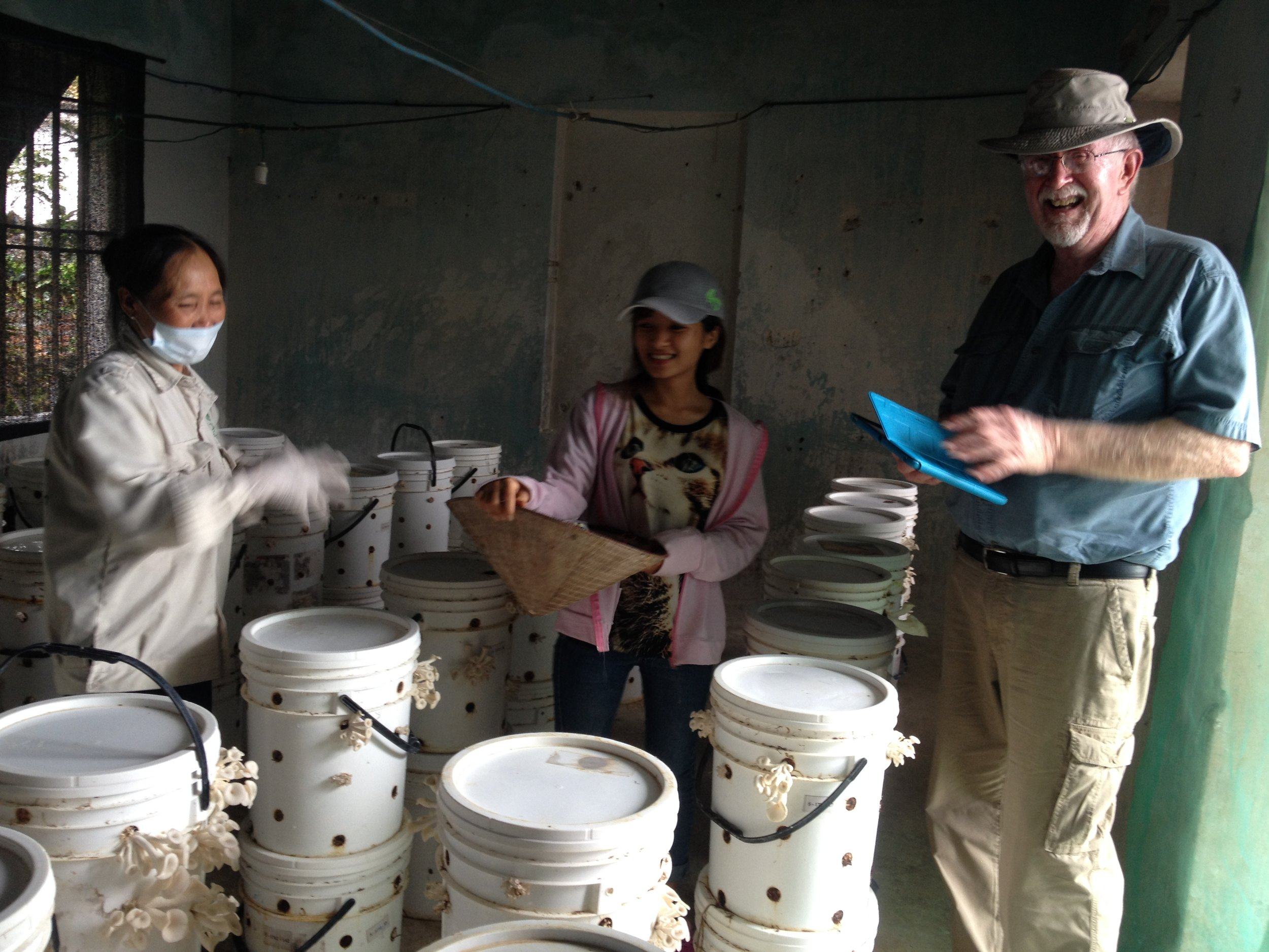 At the fruiting room of Hang Tran, one of our farmers