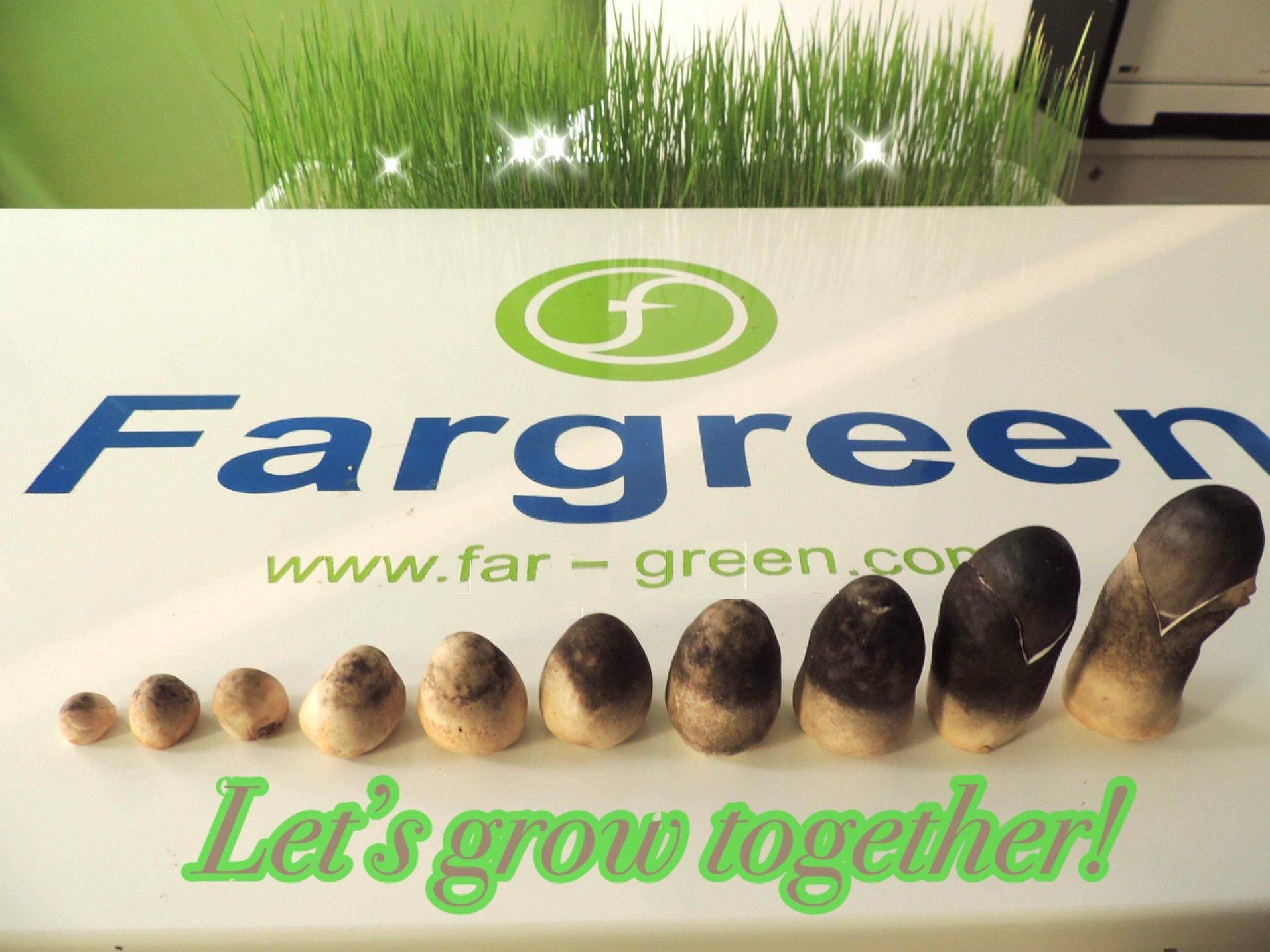 Grow together.jpg