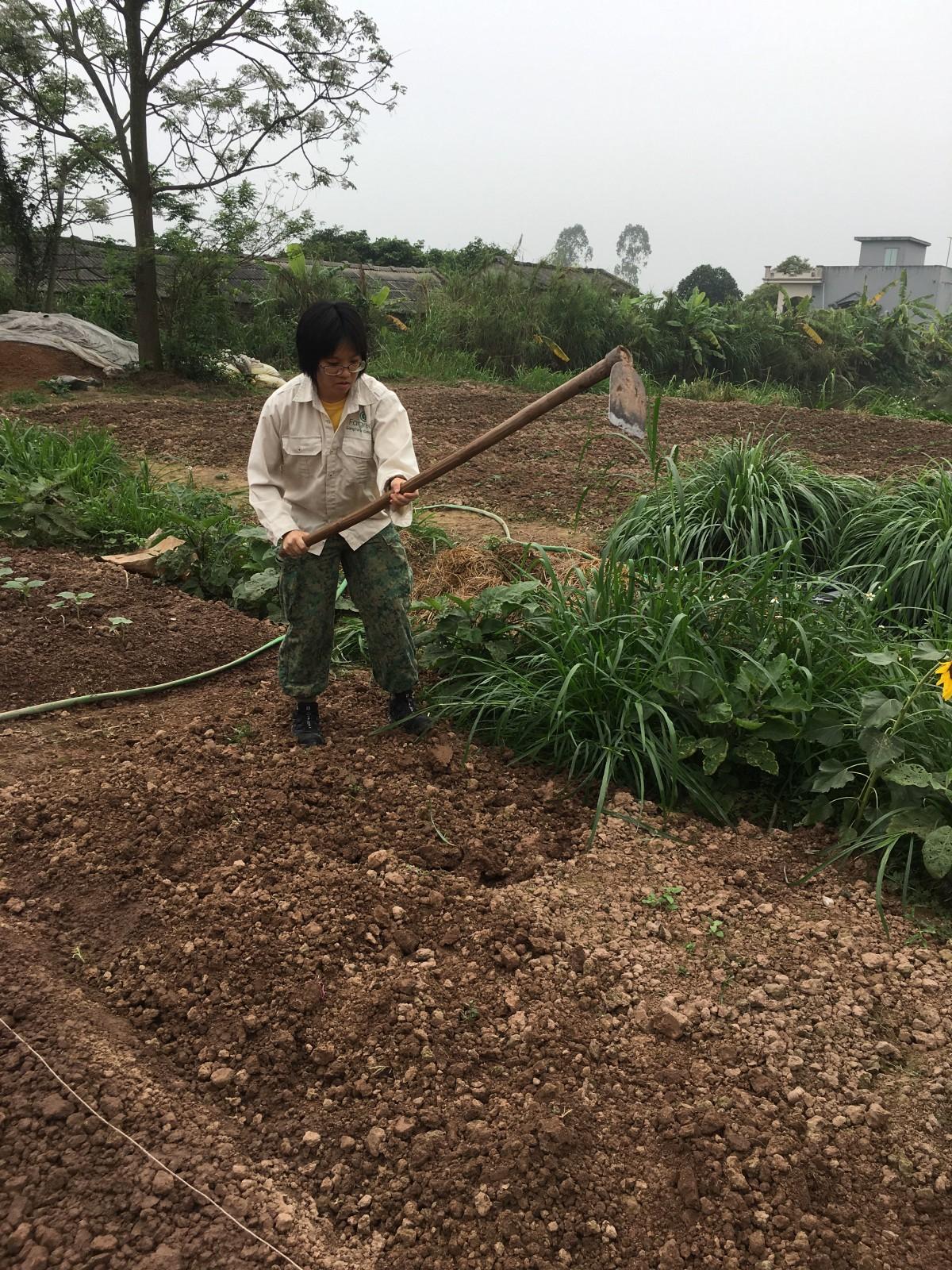making soil.jpeg