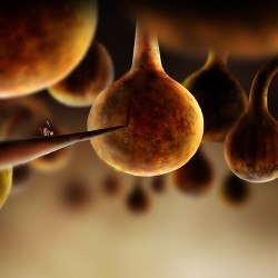 botanicula-09
