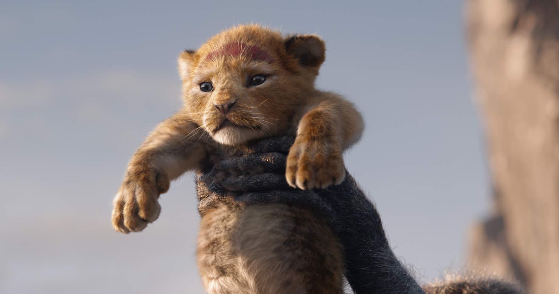 """Va anche detto che il Simba """"realistico"""" mi ricorda la mia gatta, quindi è OK."""