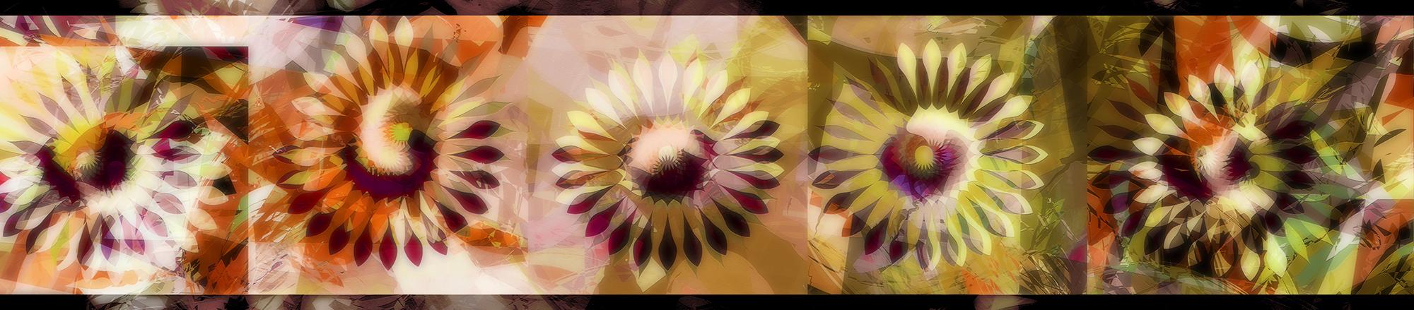 190314 Sun Flower 1