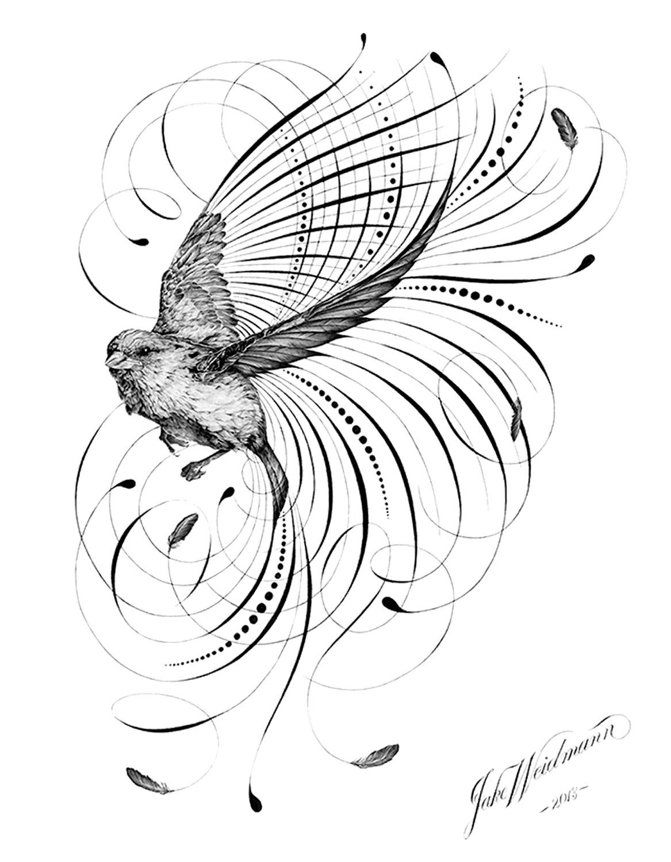 Jake Weidmann bird flourish little sparrow on Calligrafile