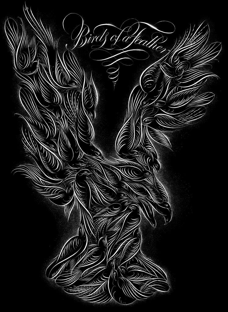 Jake Weidmann Birds of a Feather on Calligrafile