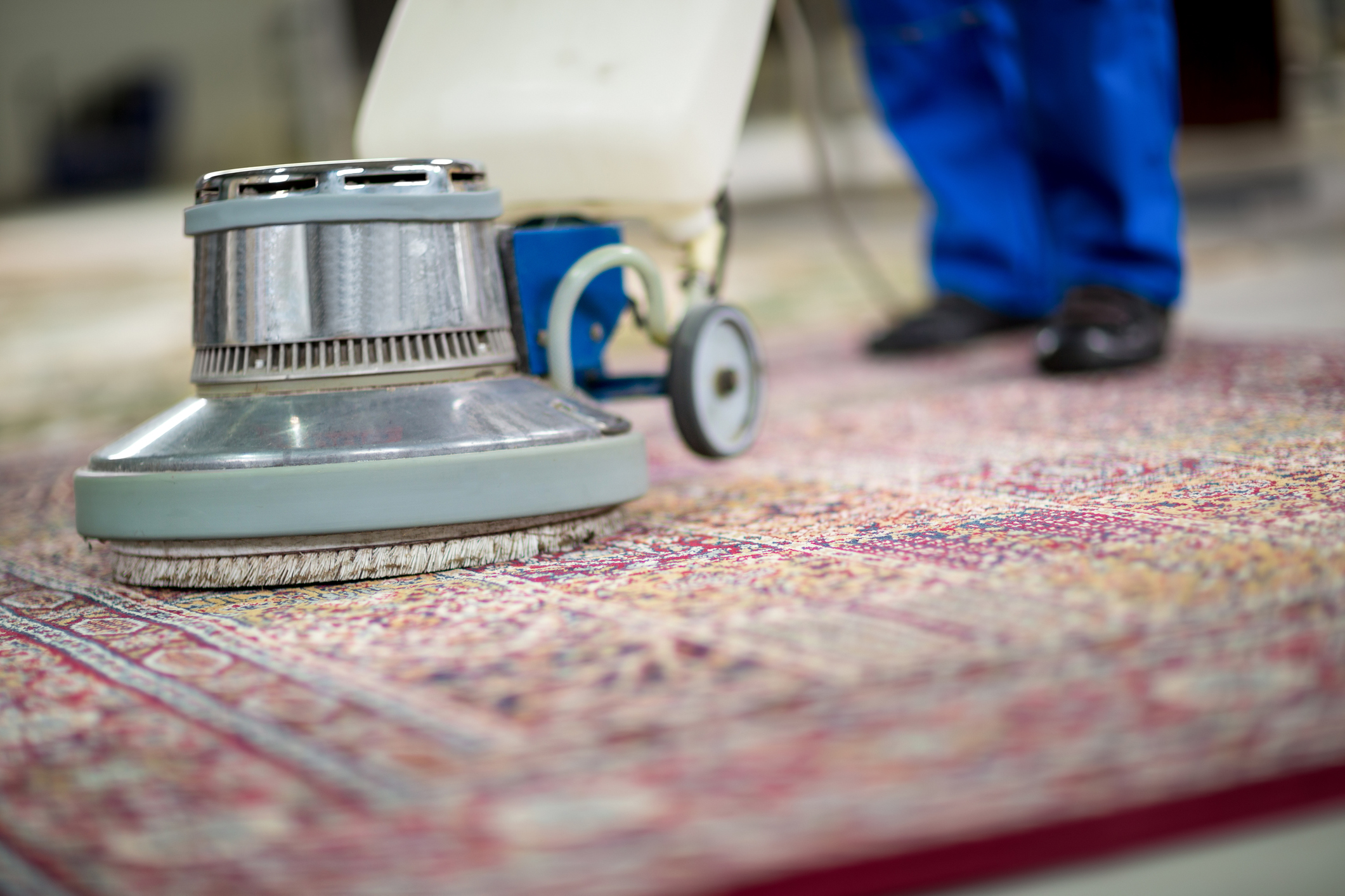 Carpet & Rug Cleaning — Stainbusters