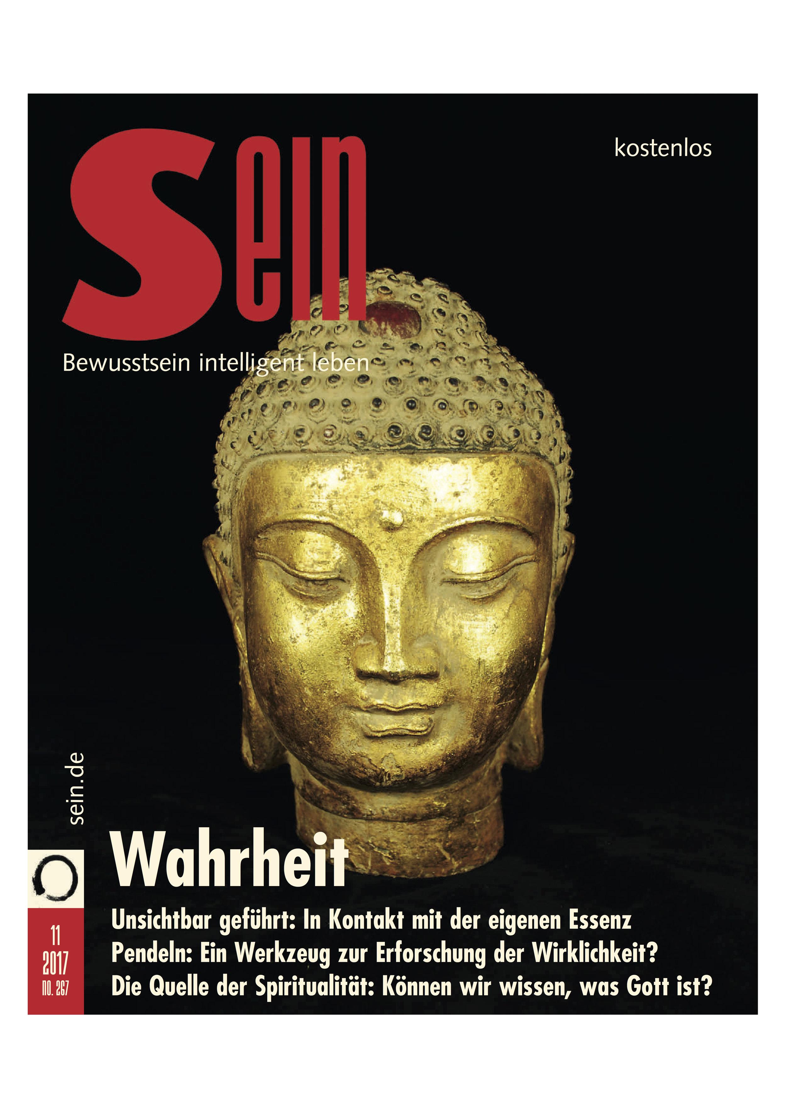 SEIN Magazin, November 2017