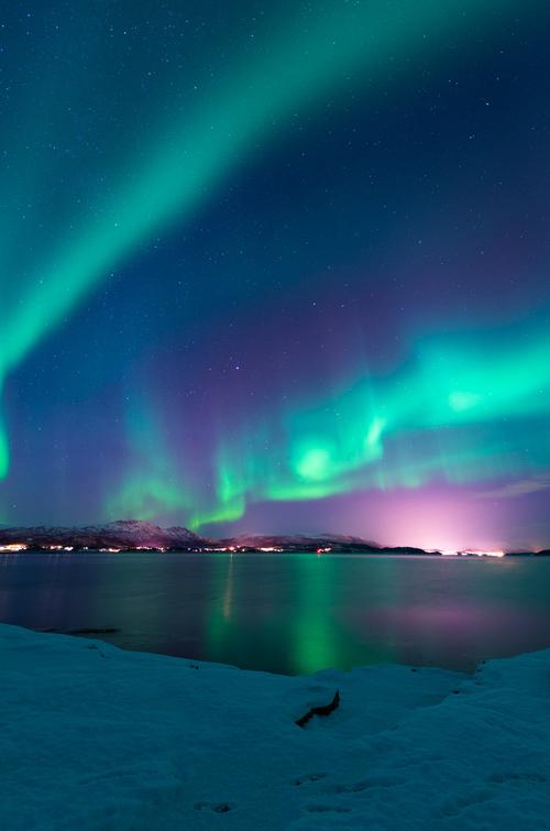 Photo: Gunnar Holmstad