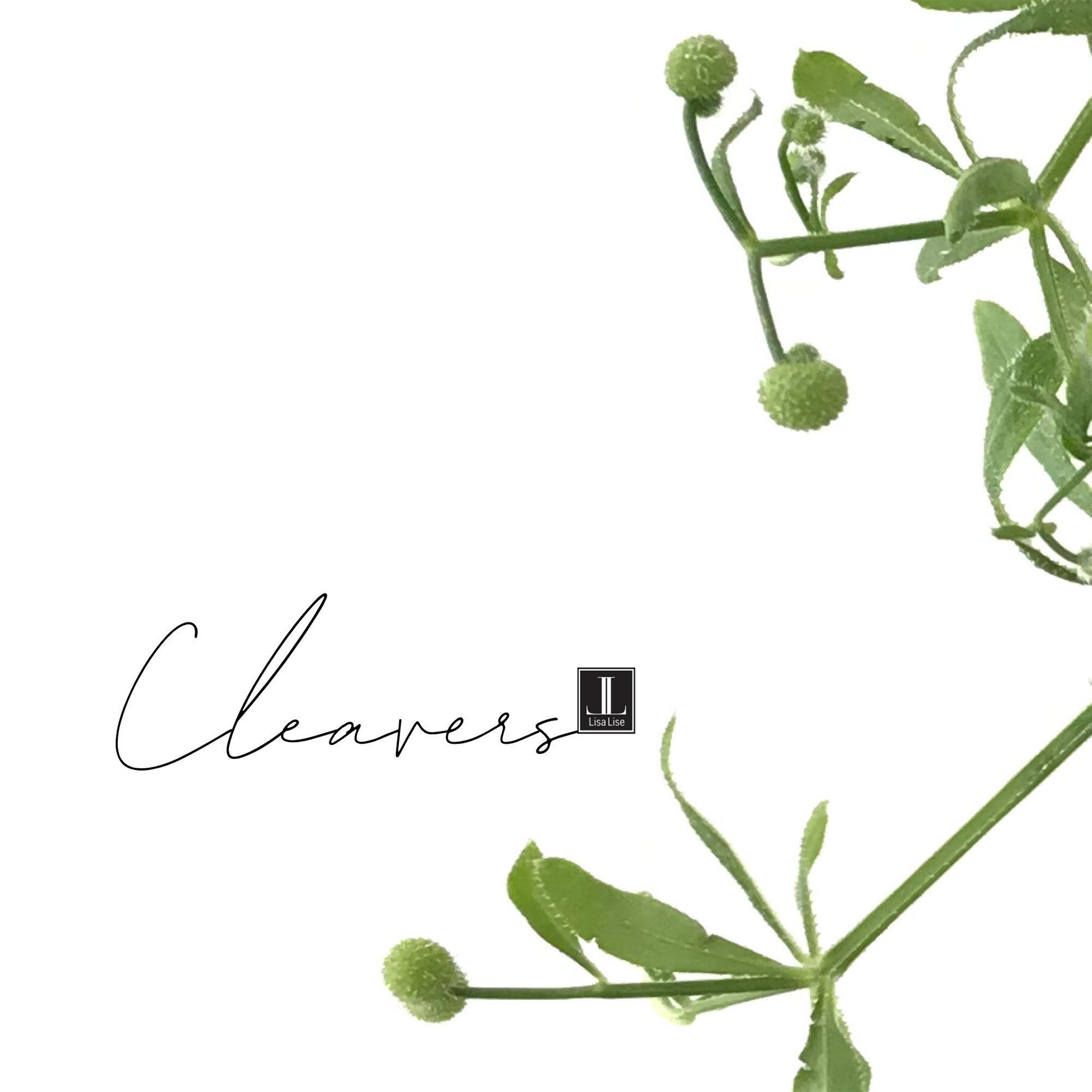 J-cleavers.jpg