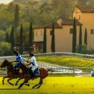 Villa a Sesta Polo Club.  Horse lovers can watch the regular competitions and enjoy a meal at La Martina Restaurant.