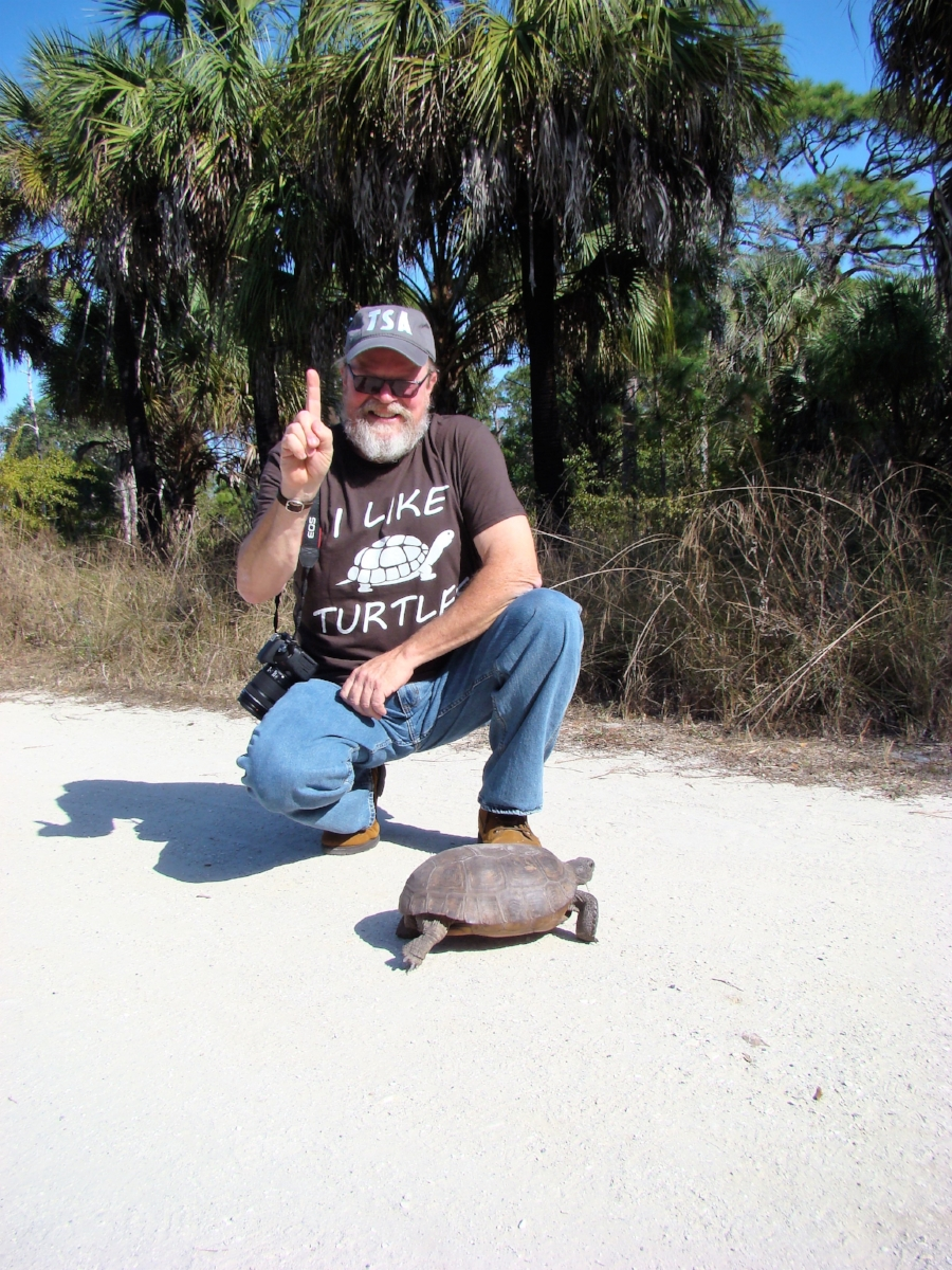 George L. Heinrich with the first turtle of The Big Turtle Year, an adult female gopher tortoise ( Gopherus   polyphemus ) at Boyd Hill Nature Preserve (St. Petersburg, Florida). Photograph by Andrew Farren.