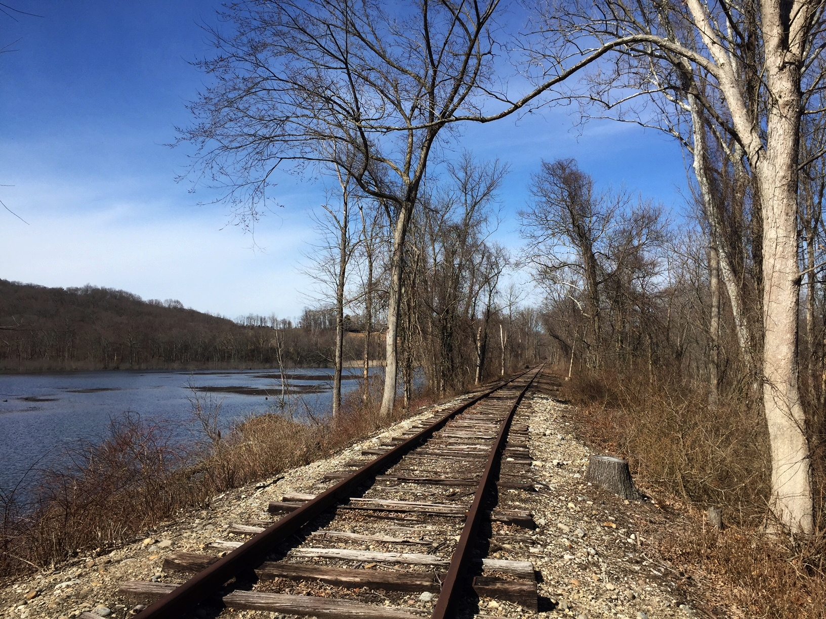 Abandoned railroad adjacent to river valley wetland (Middlesex County, Connecticut). Photograph by Timothy J. Walsh.