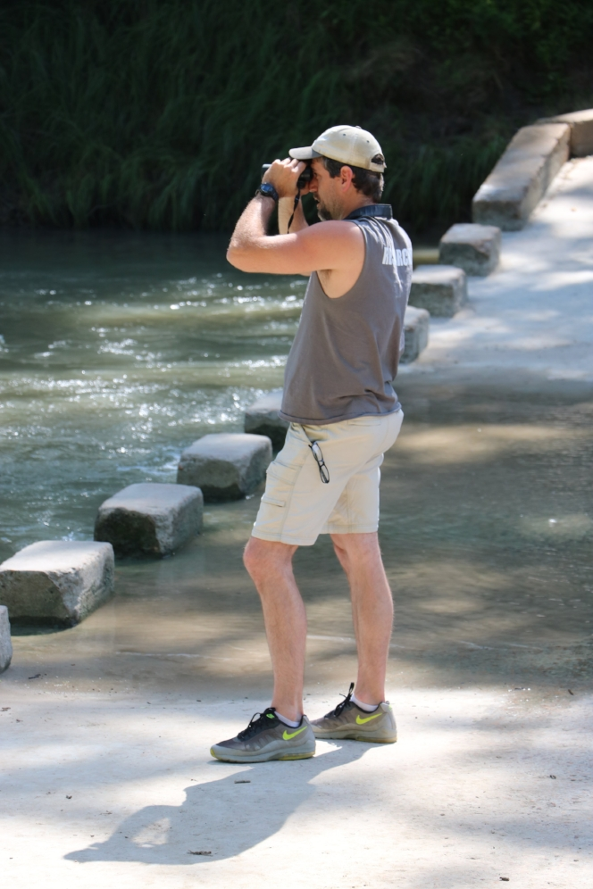 Carl J. Franklin searching for Cagle's map turtles ( Graptemys   caglei ) at Palmetto State Park (Gonzales County, Texas). Photograph by George L. Heinrich.