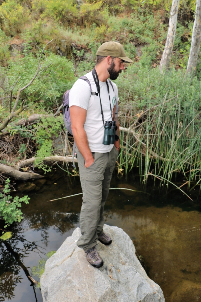 Jonathon Reinig (Riverside County Regional Park and Open-Space District) searching for western pond turtles ( Actinemys   marmorata ) in Riverside County, California. Photograph by George L. Heinrich.