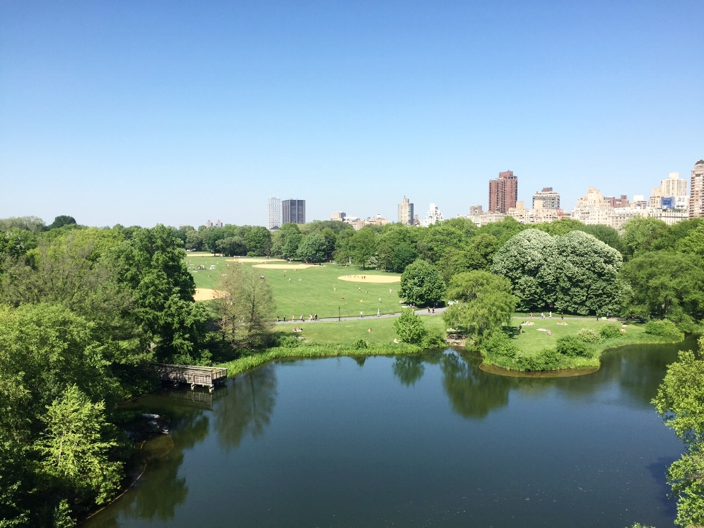 A view of Turtle Pond (Central Park, NYC) from Belvedere Castle with the South Lawn and Mannhattan in the background. Photograph by Timothy J. Walsh.