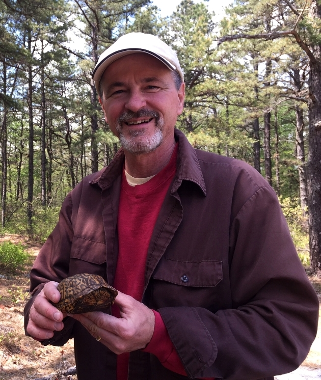 Jim Angley with a male eastern box turtle ( Terrapene c. carolina ). Photograph by Timothy J. Walsh.