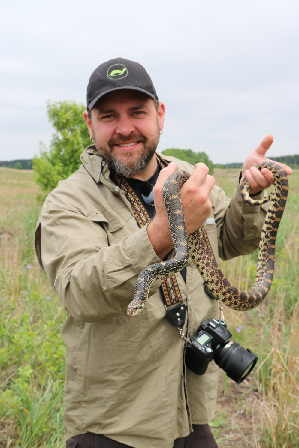 James Krause examining an adult bullsnake ( Pituophis   catenifer     sayi ) at the Thomson-Fulton Sand Prairie State Nature Preserve (Whiteside County, Illinois). Photograph by George L. Heinrich.