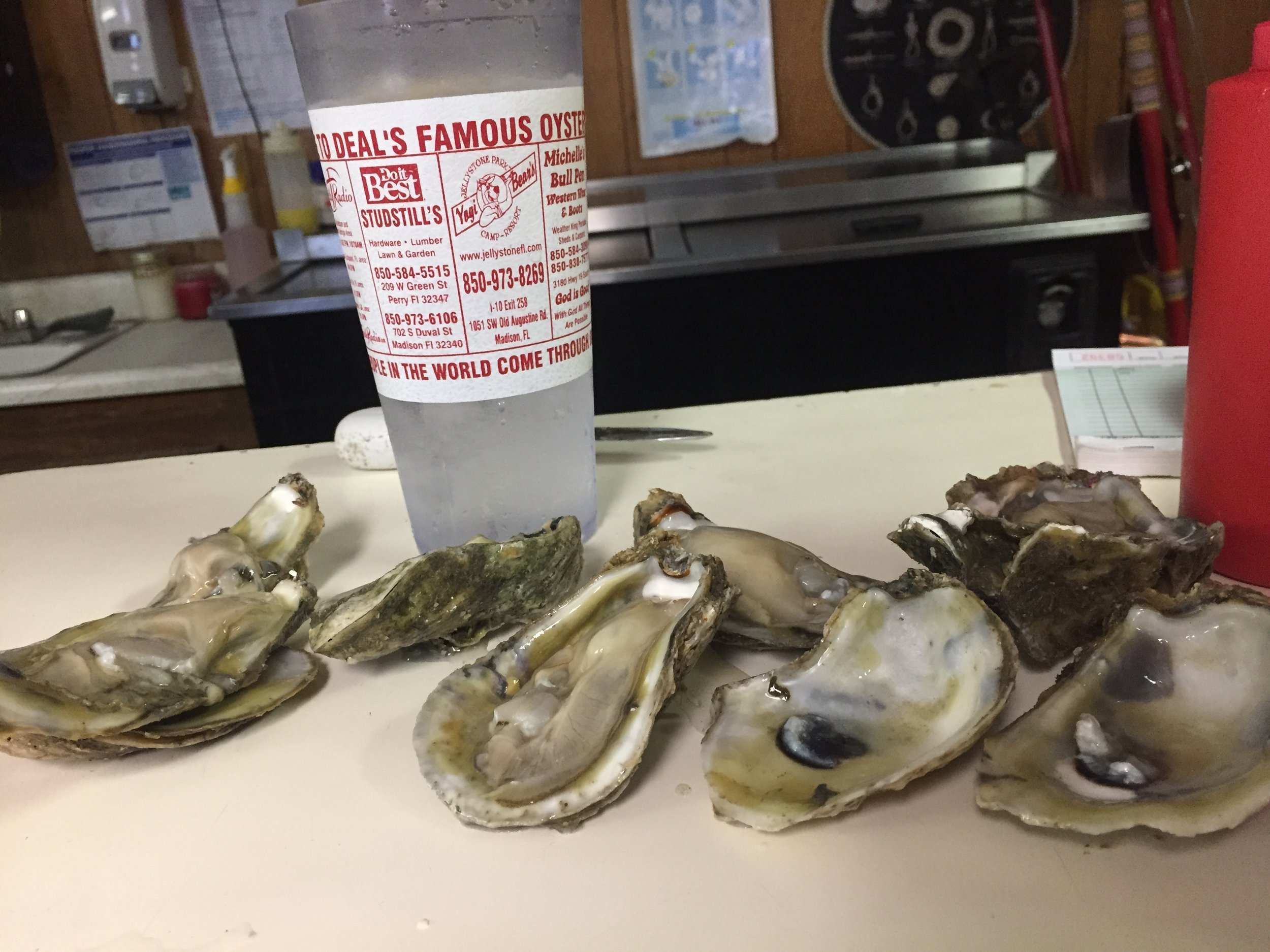 A sample of Apalachicola oysters at Deal's Famous Oyster House in Perry, Florida. Photograph by Timothy J. Walsh.