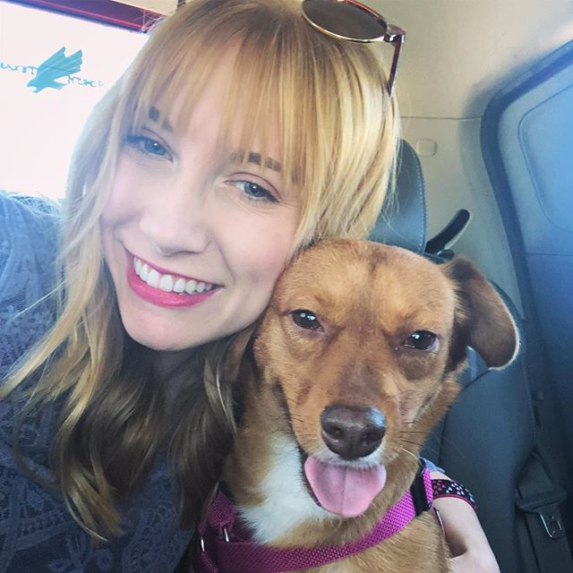 Happy #nationaldogday to my sweet Scarlett ❤️💕swipe to last pic*