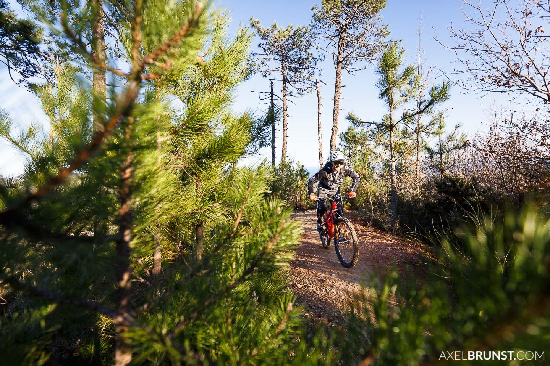 Focus-bikes-trail-team-mtb-7.jpg