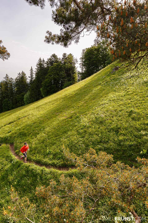 hohenzollern-trail-running-3.jpg