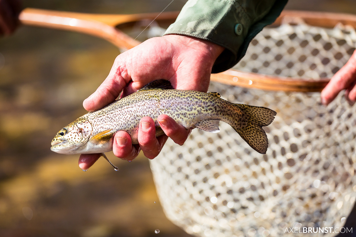 telluride-fly-fishing-colorado-6.jpg